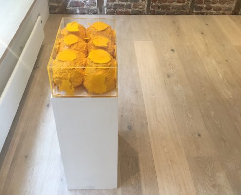 painting / sculpture comprising 8 yellow spheres of acrylic paint in a perspex box